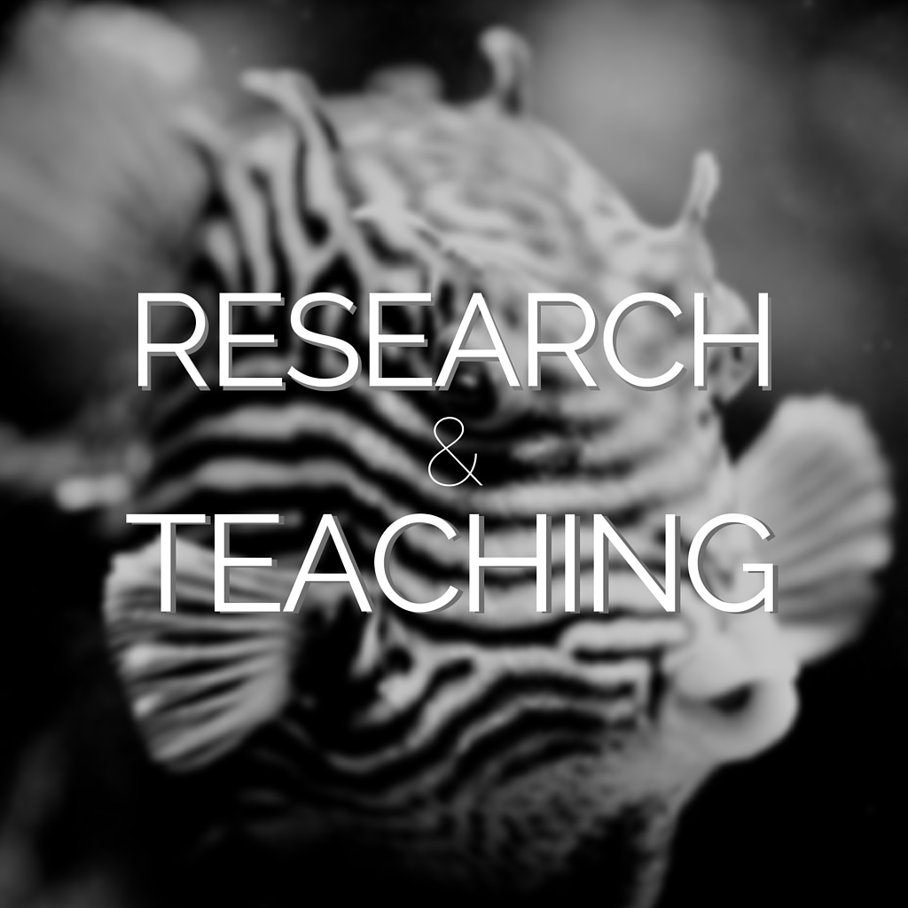 Link to Research & Teaching