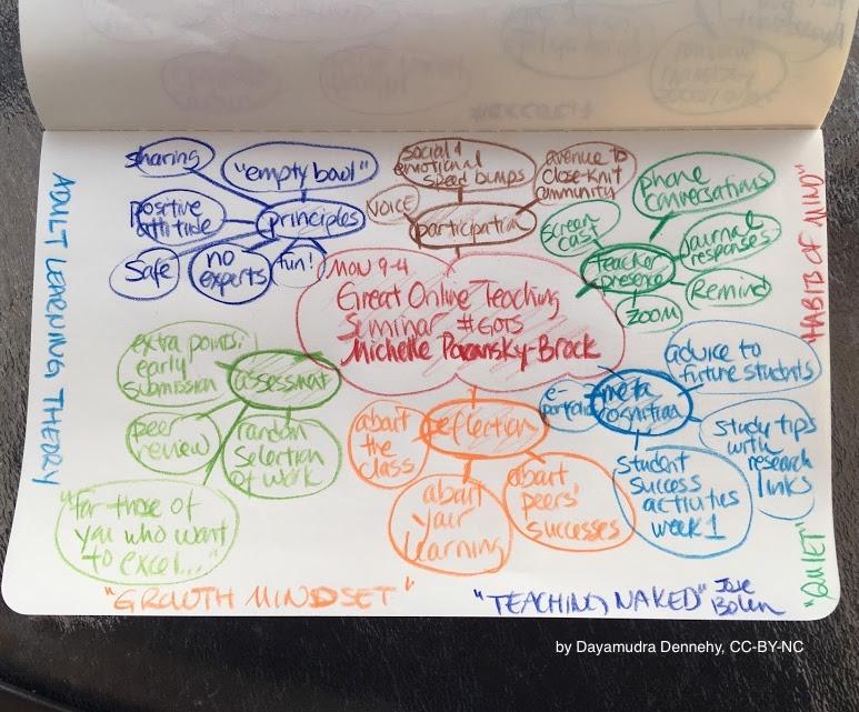 Reflections on My First Great Online Teachers Seminar (GOTS)